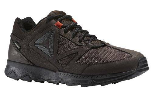 Zapatillas REEBOK SKYE PEAK GTX 5.0 marrón BS7670